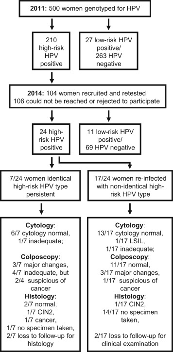 hpv high risk detected)