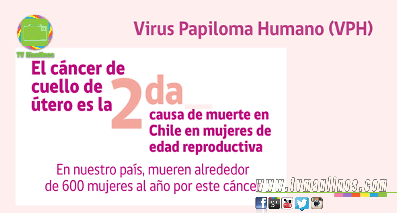 papiloma virus cancer cuello uterino)