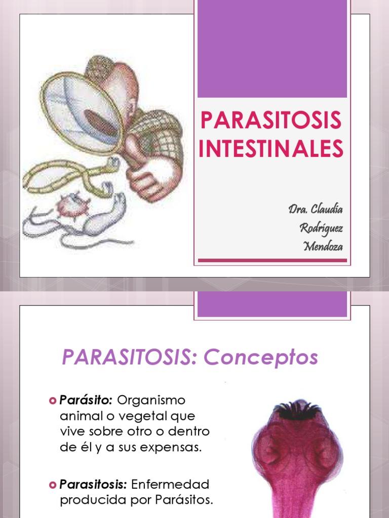 Cum să paraziti din organism la domiciliu - remedii populare și medicamente pentru copii și adulți