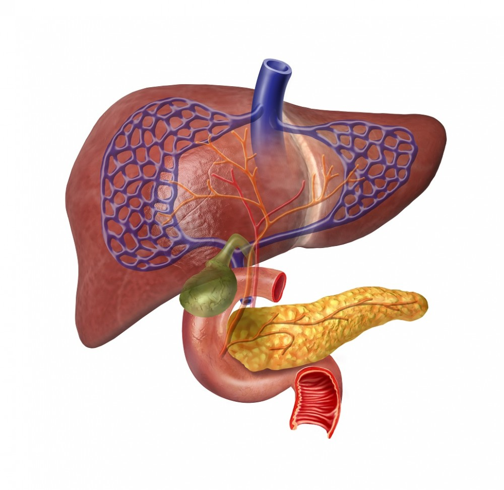 cancer hepatic cu metastaze)