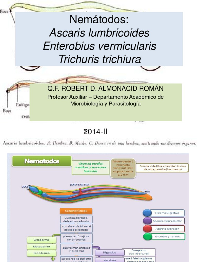 enterobius vermicularis virulence factors)