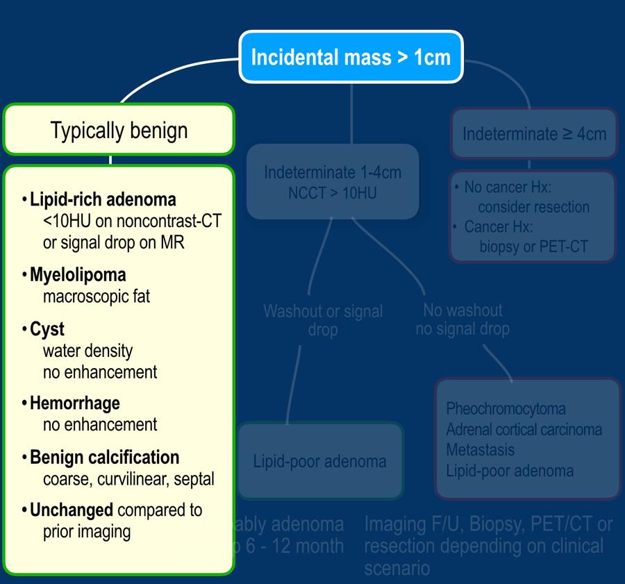 cancer malign vs benign)