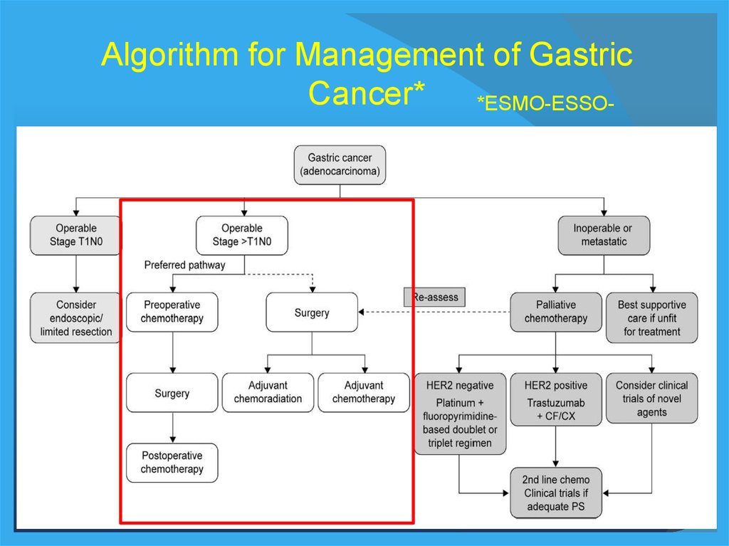 PPT – CANCERUL GASTRIC PowerPoint presentation | free to download - id: 3ebYzEyZ