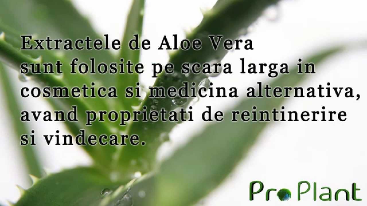 Suc de Aloe Vera beneficii