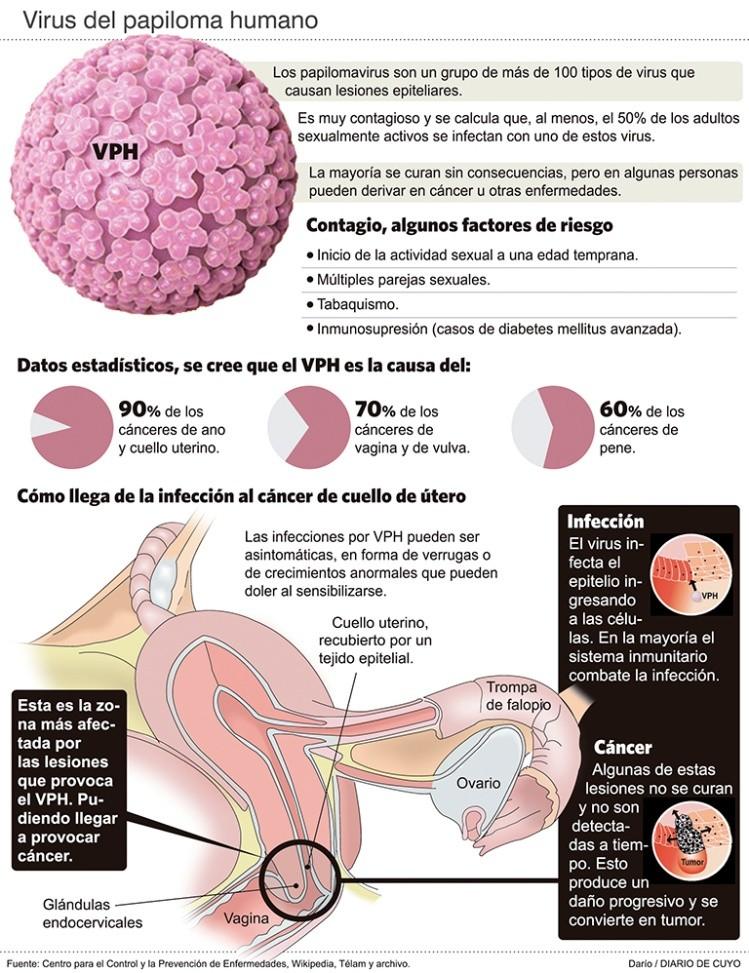 papilloma virus chez les hommes cancer cerebral prognostico