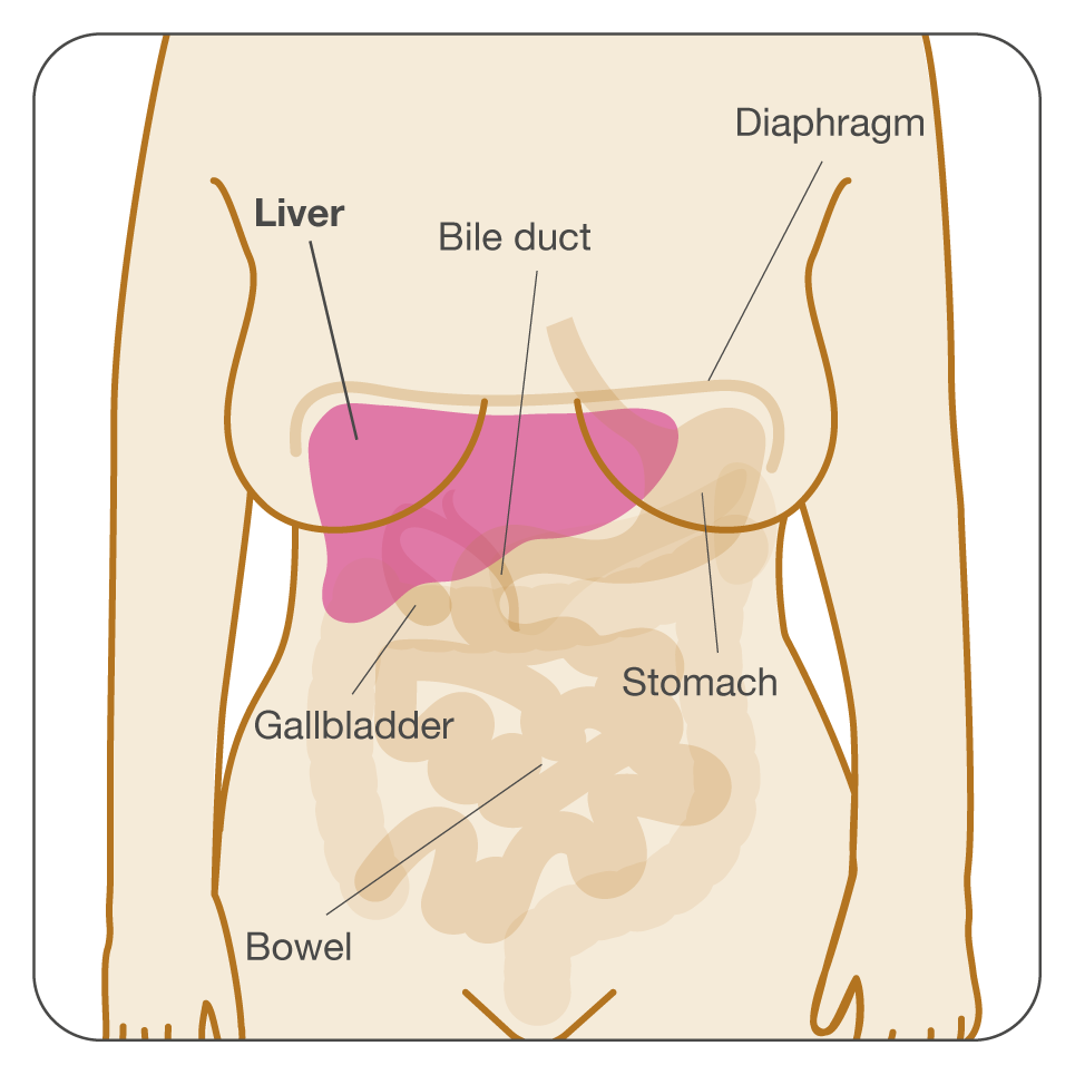 abdominal cancer pain relief)