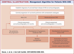 neuroendocrine cancer stage 4 prognosis)