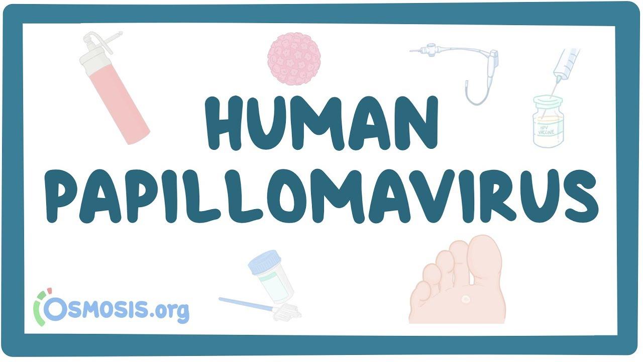 pronunciation of papillomavirus)