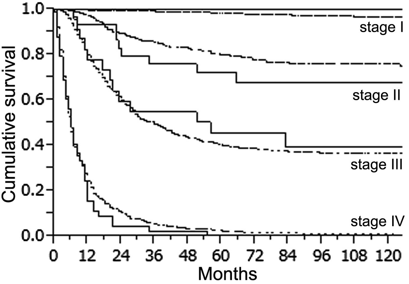 gastric cancer mortality rate)