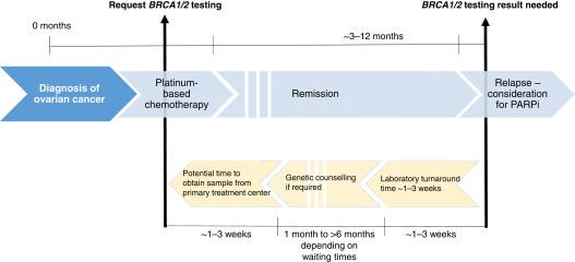 Testare Genetica - Personal Genetics
