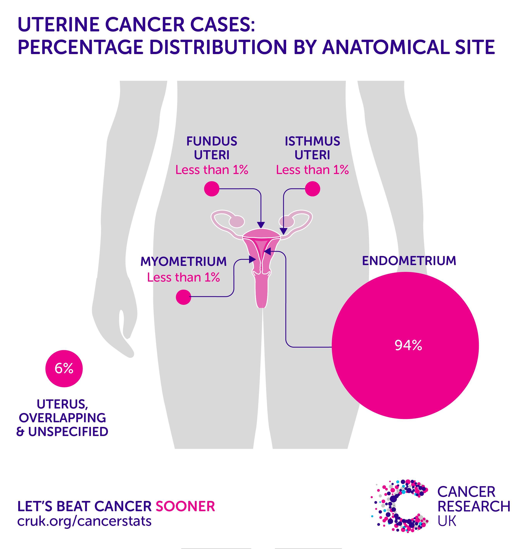 endometrial cancer epidemiology)
