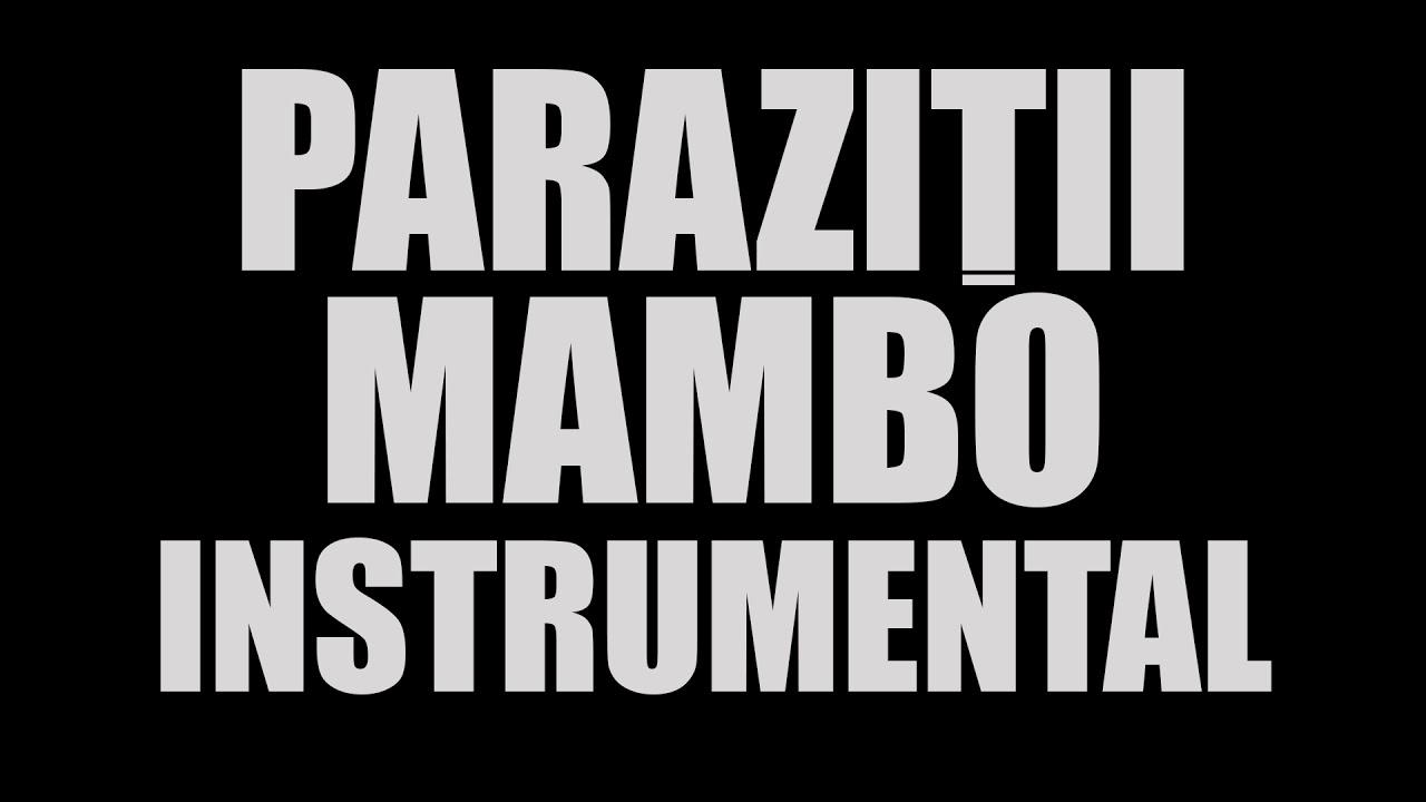 Parazitii - Mambo Nr. 9 - Play Sun Music