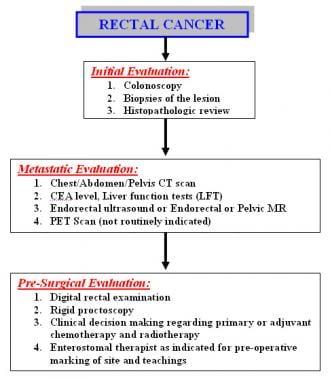 h papilloma vaccine papiloma humano caracteristicas generales