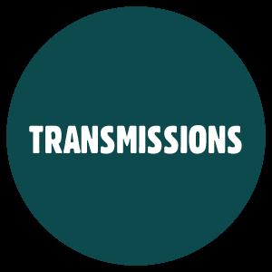 LES INFECTIoNS SEXUELLEMENT TRANSMISSIbLES