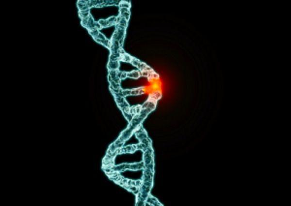 cancerul se transmite genetic)