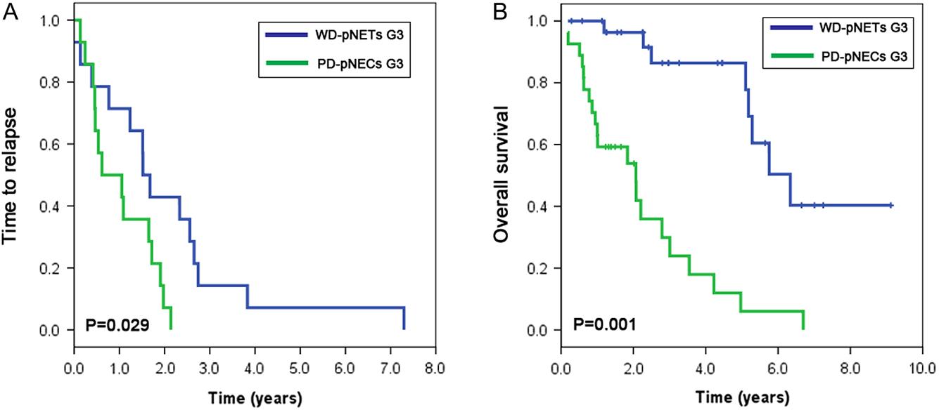 Markeri imunohistochimici în diagnosticul diferenţial al tumorilor pancreatice