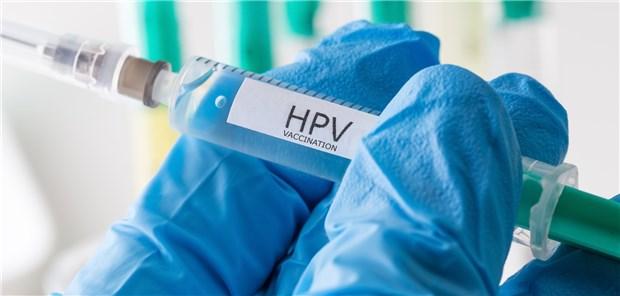 virusului hepatitei - Deutsch Übersetzung - Rumänisch Beispiele | Reverso Context