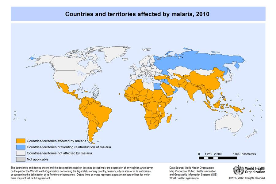 helminth infection world health organisation