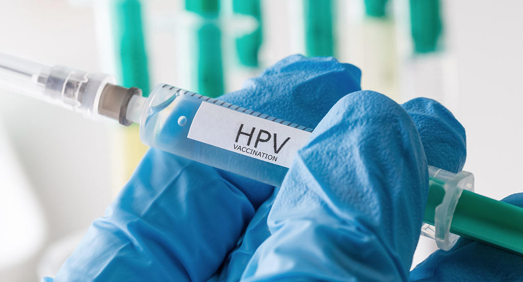 human papillomavirus infection with pregnancy
