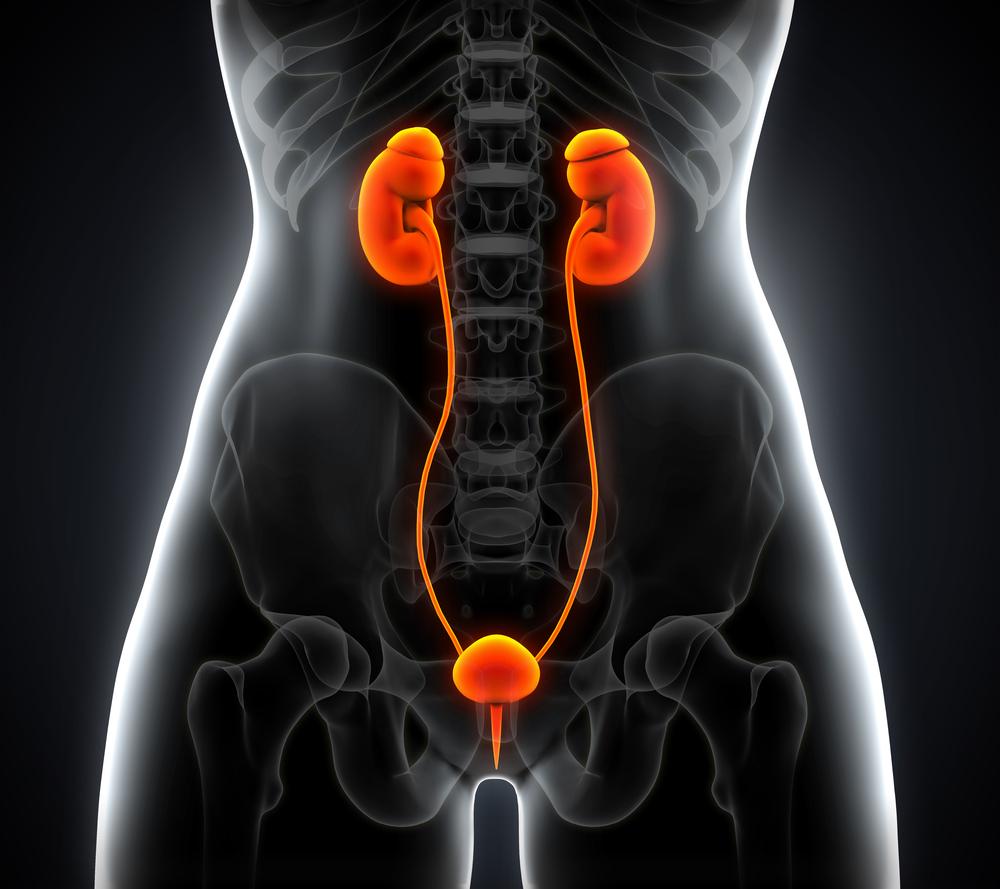 endometrial cancer and endometriosis)