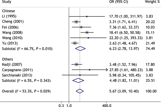 hpv and lung cancer risk a meta-analysis)