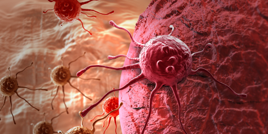 paraziti intestinali la bebe hpv papilloma treatment