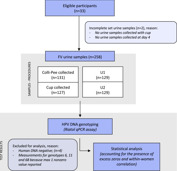 papillomavirus et urine)