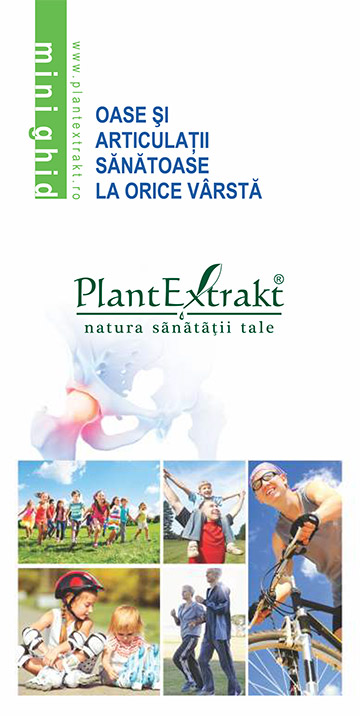 plantextrakt detoxifiere articulatii