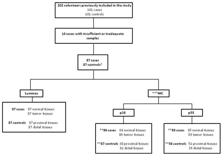human papillomavirus and esophageal cancer)