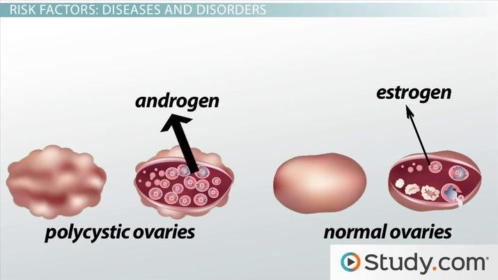 endometriali - Traducere în engleză - exemple în română | Reverso Context