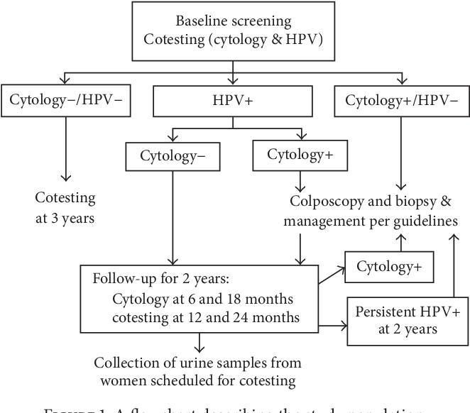 Implicarea genomului papiloma virusului uman (hpv) în oncogeneza cancerului cervical