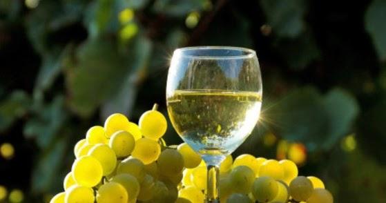 cancerul nu suporta vinul zodia cancerului personaje principale