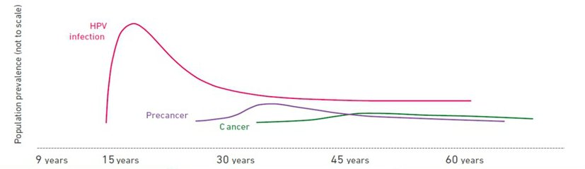 risk of cervical cancer with hpv 16