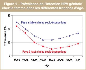 papillomavirus humain frequence)