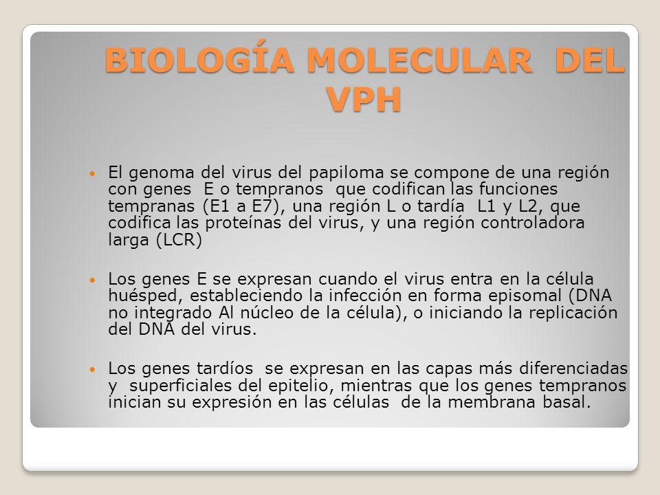 virus papiloma humano biologia molecular anthelmintic word meaning