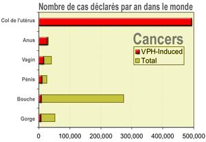 pourcentage femme papillomavirus)
