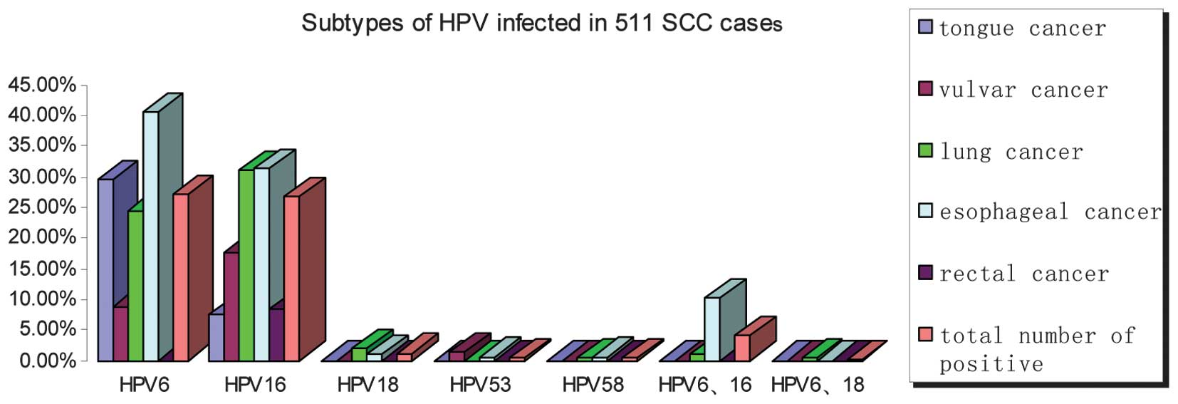 incidence of human papilloma virus in lung cancer