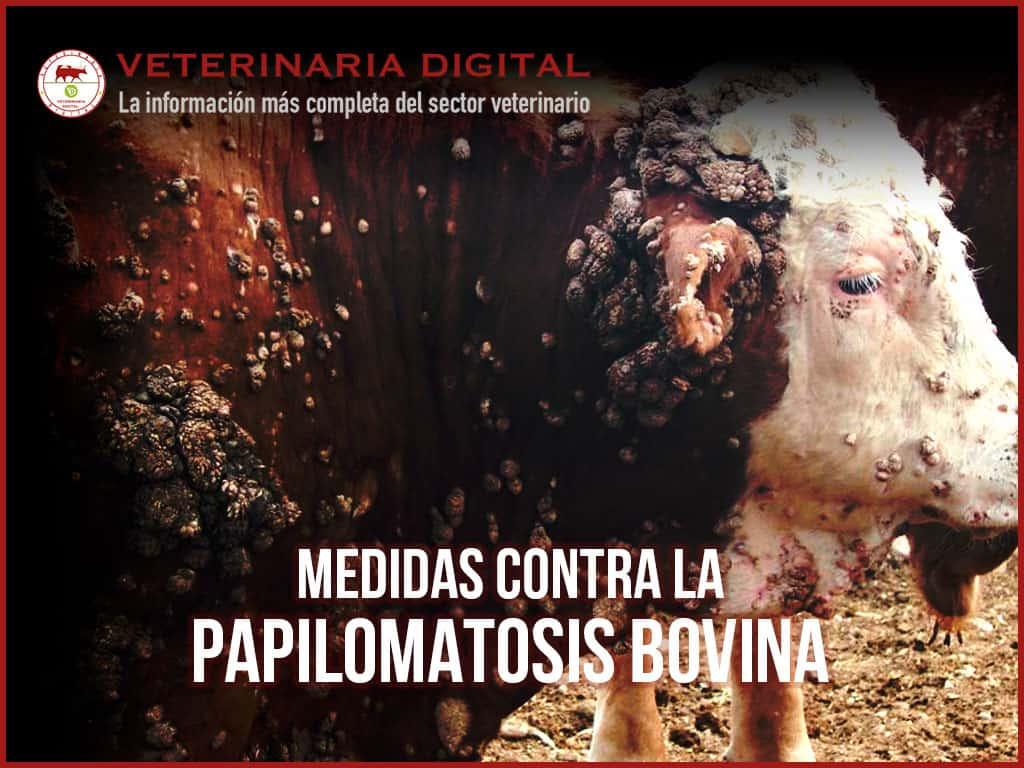 papilomatosis bovina agente causal