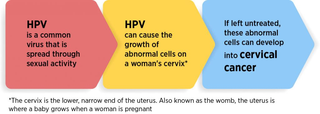 human papillomavirus cervical dysplasia rectal cancer with prostate invasion