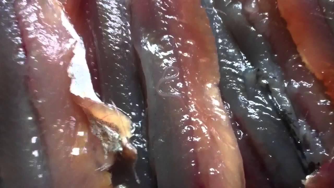 Atenție când mâncați pește! Aproape toate tipurile de pește conțin un vierme periculos