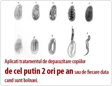 tipuri de viermi intestinali la copii
