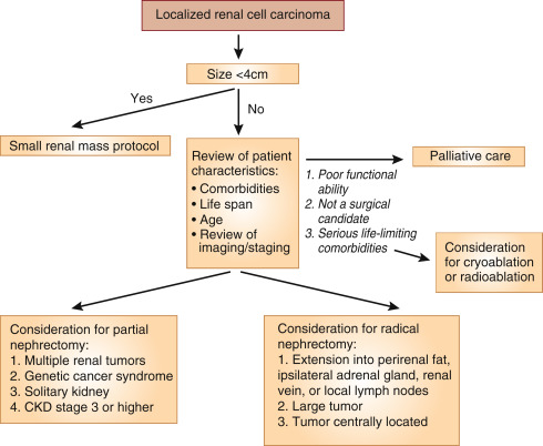 hpv and papilloma peritoneal cancer markers