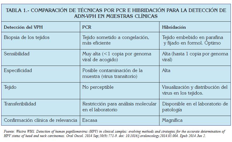 virus del papiloma humano caracteristica