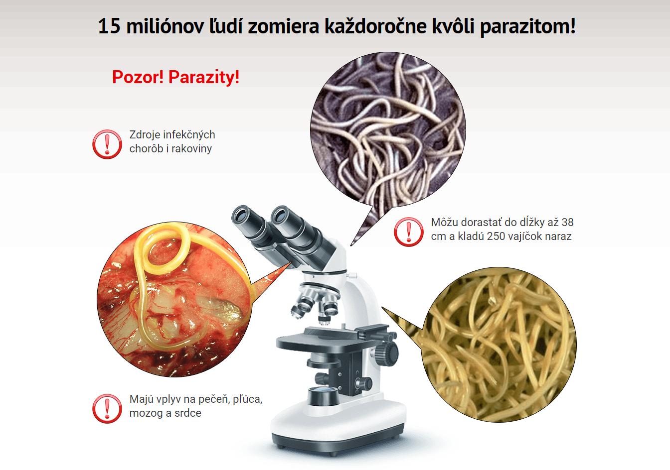 parazity v tele produkty