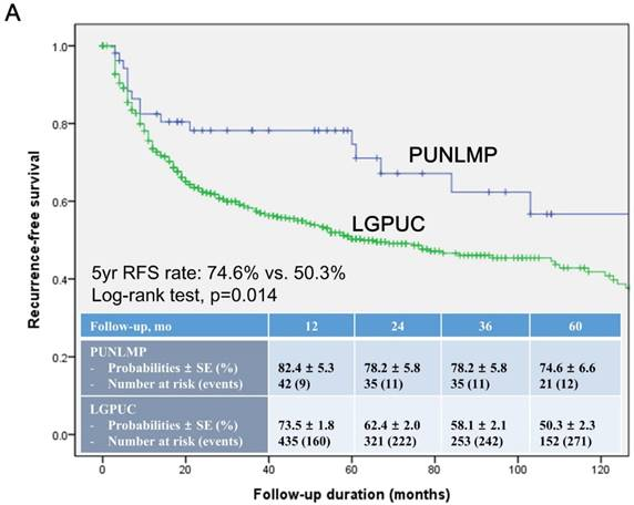papillary urothelial low malignant potential