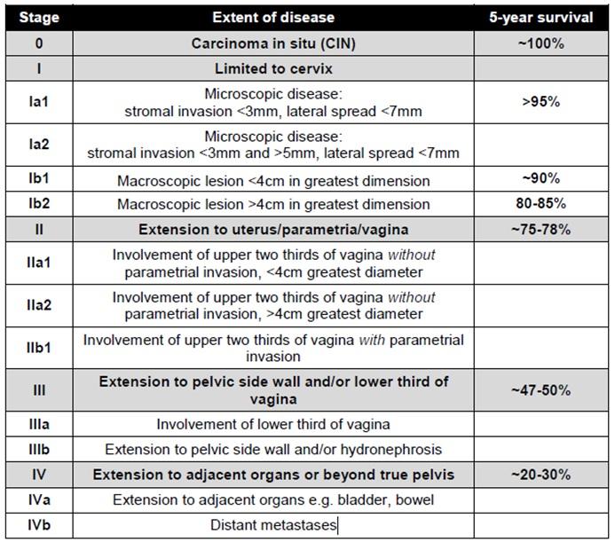 cervical cancer figo classification tabere detoxifiere romania
