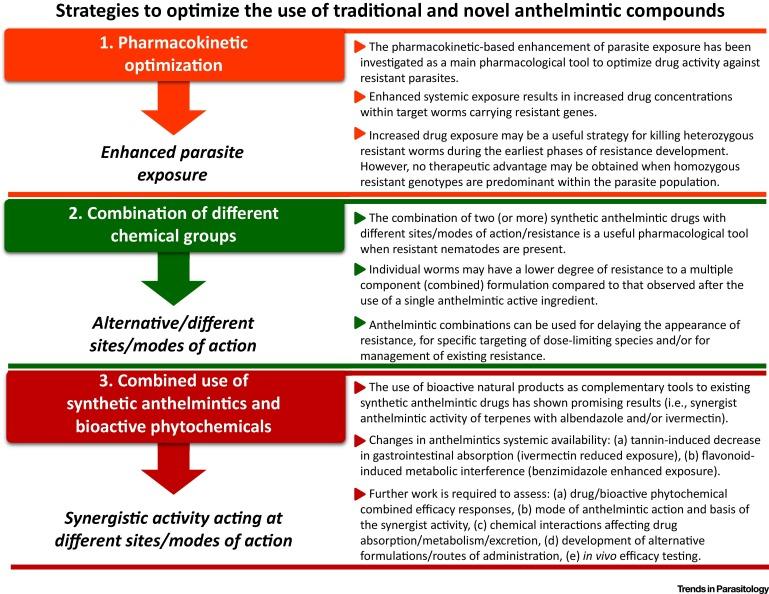 how anthelmintic drugs work