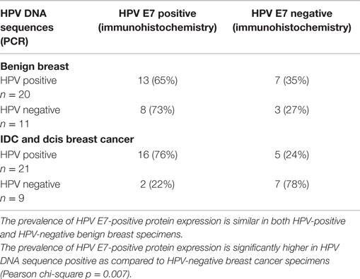 papilloma breast cancers papillomavirus as cause