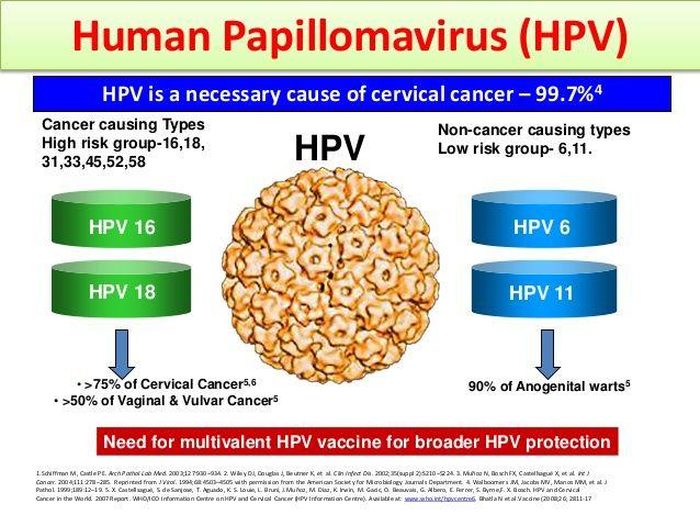 can human papillomavirus cause cervical cancer)