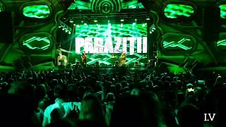 parazitii neversea 2019)